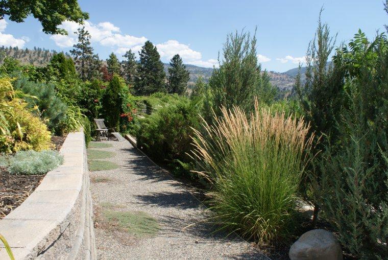 penticton-backyard-4