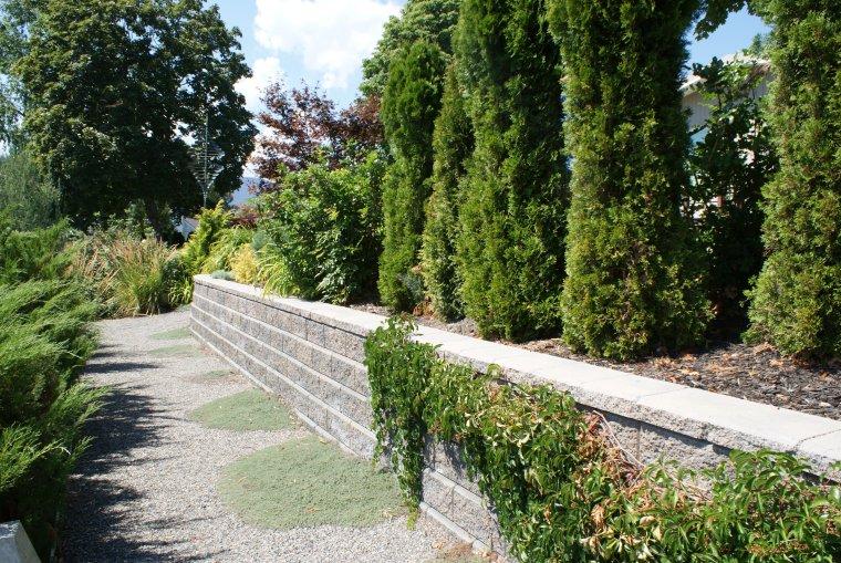 penticton-backyard-5