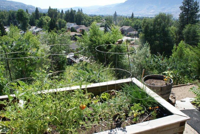 penticton-garden-6