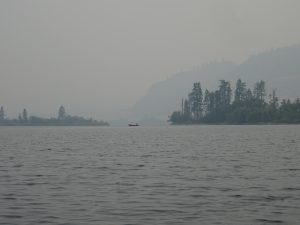 Smoke in 2015