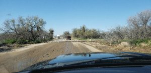Catalina State Park road open